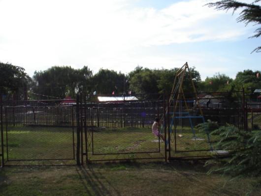 看不到動物的動物園偶有獅吼虎嘯