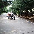 園中雙人車