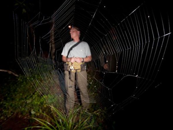 世界最大蜘蛛網007.jpg