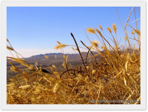 Inner Mongolia (13).jpg