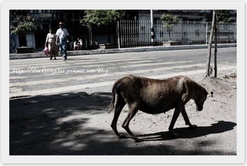 Yangon Streets & Temples (6).jpg