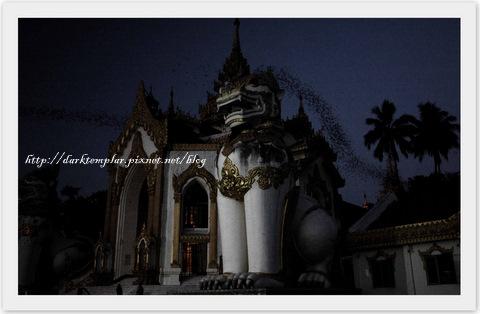 Yangon Streets & Temples (16).jpg