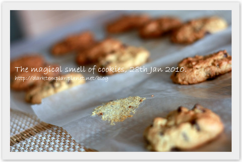 100128 Magical smell of cookies.jpg