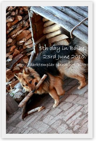 100623 5th Day in Baihe (1).jpg