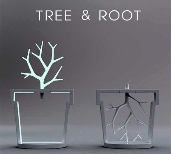 根與樹.jpg