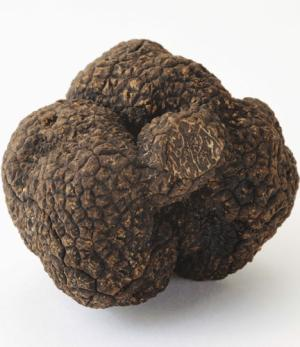 38-truffle-getty.jpg