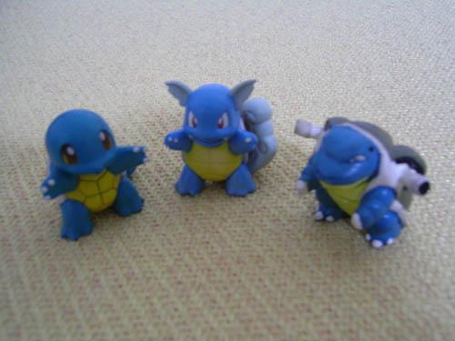 杰尼龟-卡咪龟-水箭龟.jpg