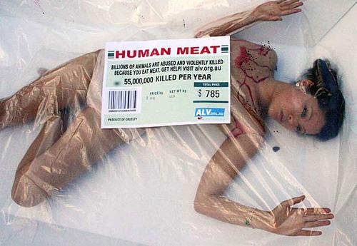 人肉.jpg