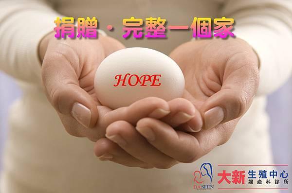 卵子捐贈.jpg
