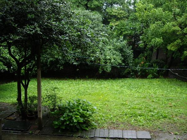 老房子後院