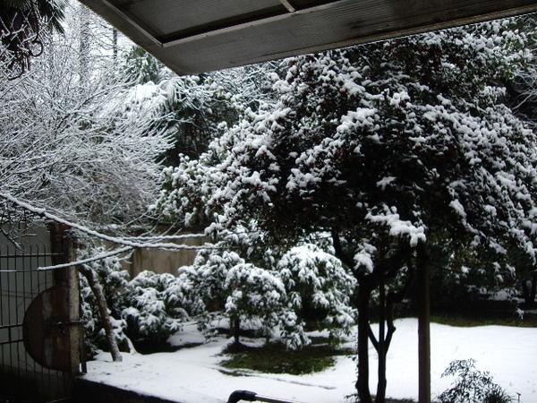 洋房後院雪景