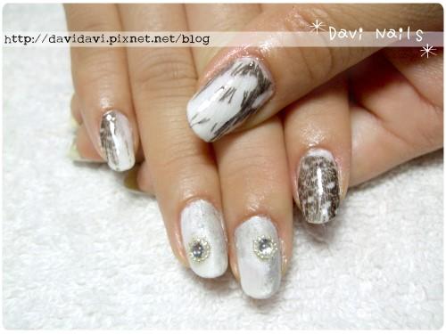 20111108。銀白灰羽毛