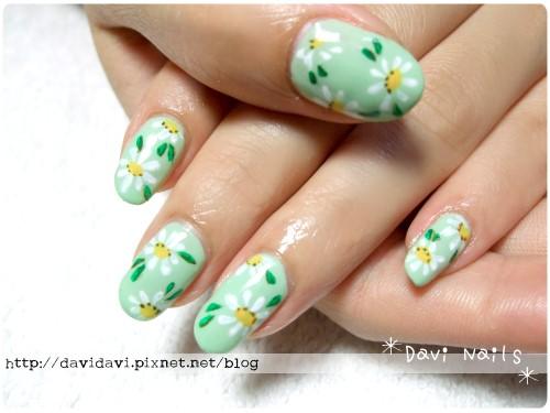20120412。嫩綠小雛菊