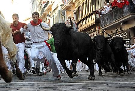 16.5西班牙奔牛節