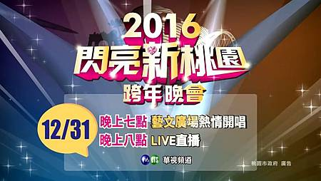 2016閃亮新桃園跨年晚會.jpg