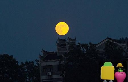 0明月圓月中秋夜-5.jpg