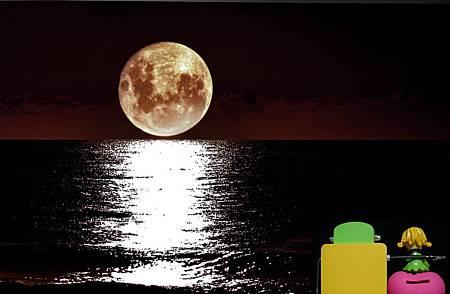 0明月圓月中秋夜-8.jpg