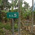 出口大約在136縣道指標53.5K處