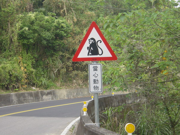 有趣的路標