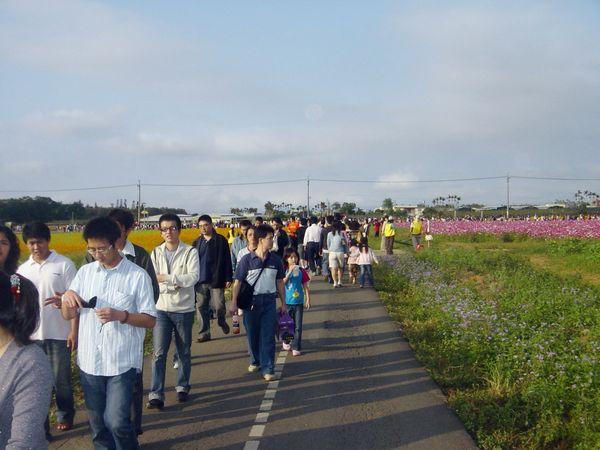 很多人都要來看花