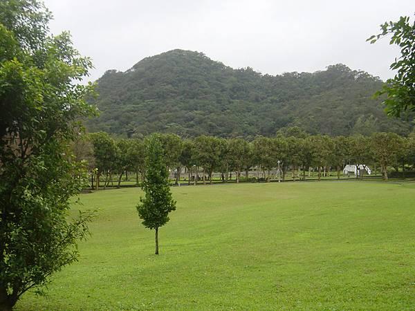 大湖公園的大草皮