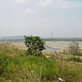 大安溪河床