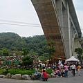 橋下正舉辦桐花季活動