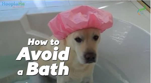 逃離洗澡的方法
