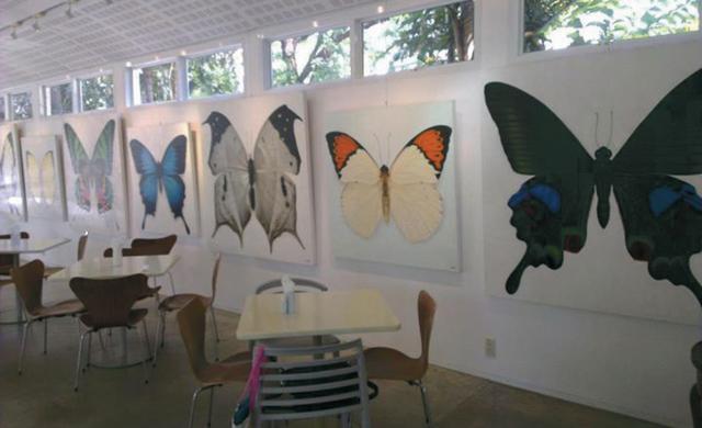 The Garden Gallery and Café Neilson Hays Library