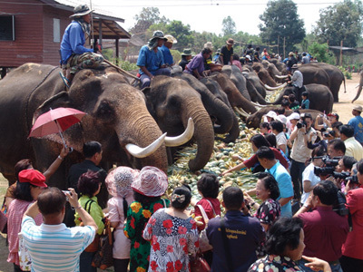 泰國大象日
