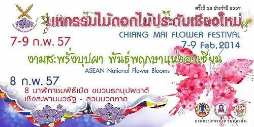 2014清邁花卉節