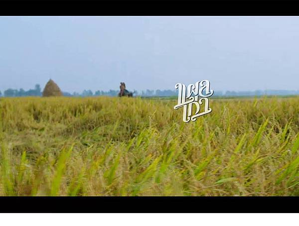 泰國電影《舊傷》