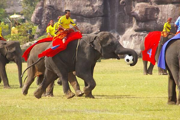 素輦象節(งานวันช้างไทย)