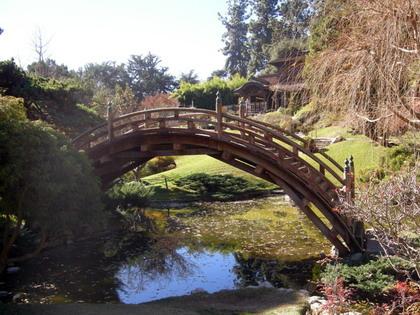 japan garden.1s.jpg