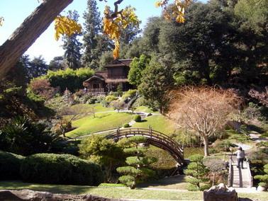 japan gardens.jpg