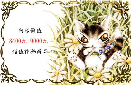 花園小貓拷貝3.jpg