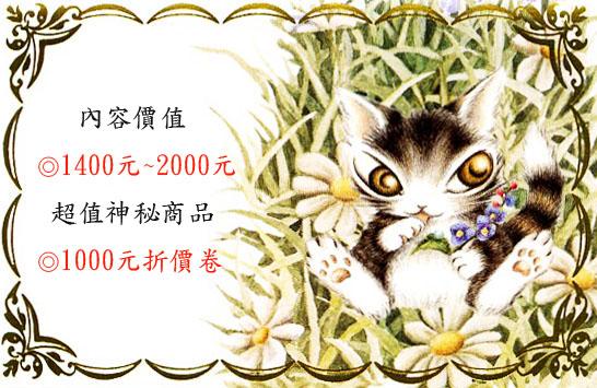 花園小貓拷貝2.jpg