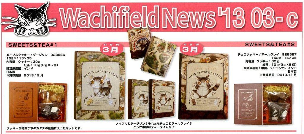news13-03-c-1