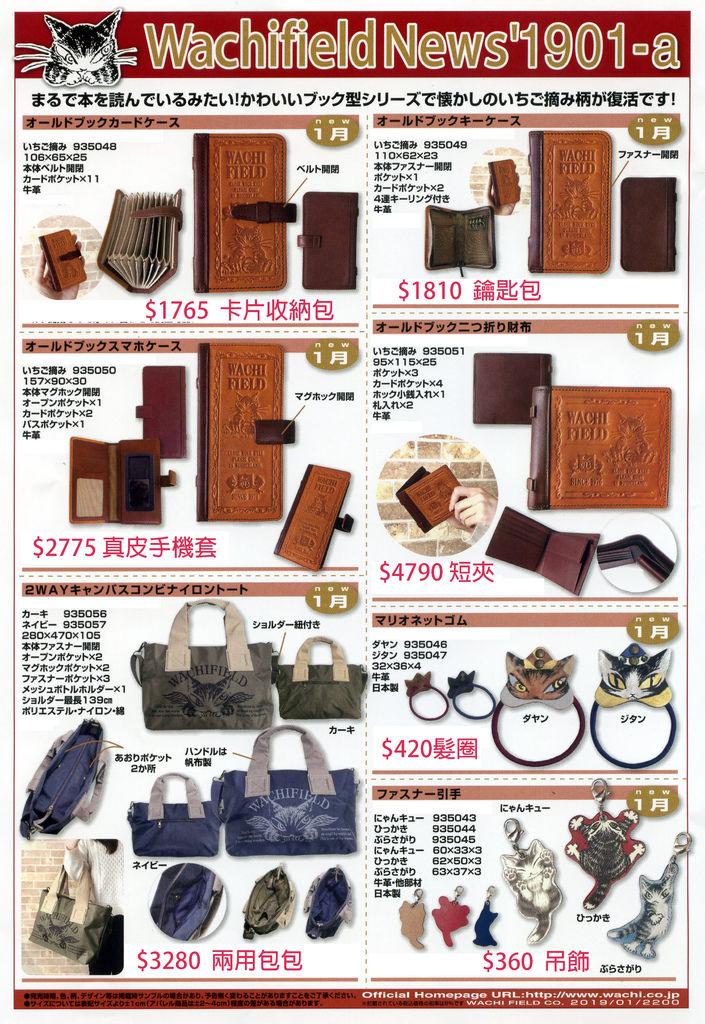news19-01-a.jpg