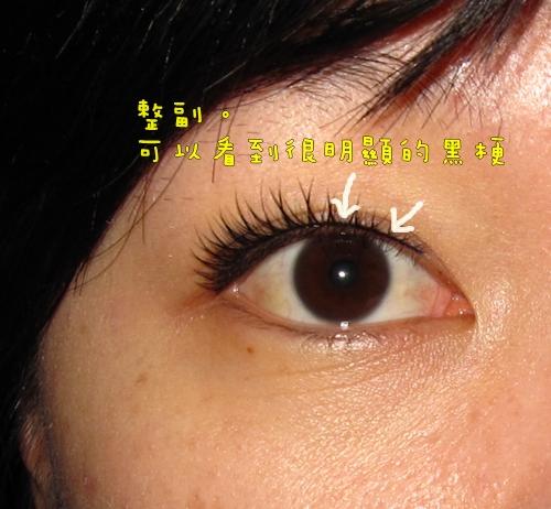 20090120假睫毛練習 (8).JPG