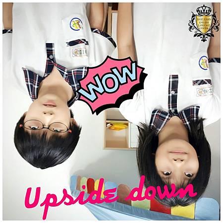 20170511 upside down.jpg