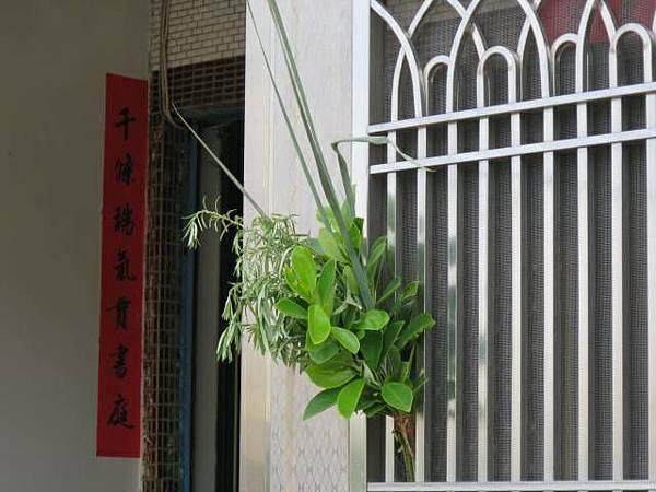 「菖蒲、艾草」的圖片搜尋結果