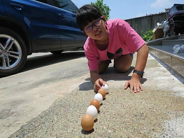 端午習俗立蛋