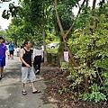 【彰化縣生態景點】獨角仙的季節!芬園進芬社區甲蟲生態祕境5.jpg
