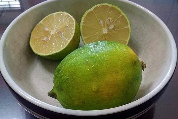 檸檬是居家生活好幫手.JPG