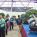 中臺灣農業博覽會暨國際盆栽展-彰化溪州公園22.jpg