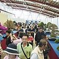 中臺灣農業博覽會暨國際盆栽展-彰化溪州公園21.jpg