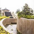 秀水龍騰公園流水梯的造景1.jpg