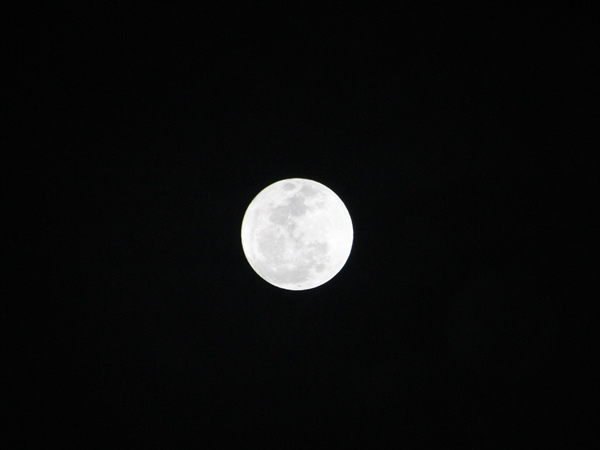 天文迷別錯過!「超級月亮」照亮地球1.JPG
