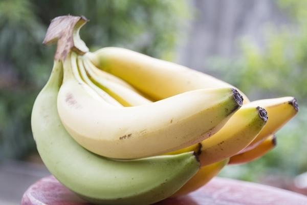 香蕉屬芭蕉科,閩南語也叫弓蕉.jpg